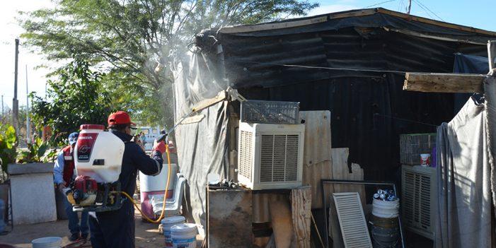 Llama Secretaría de Salud a evitar criaderos de moscos