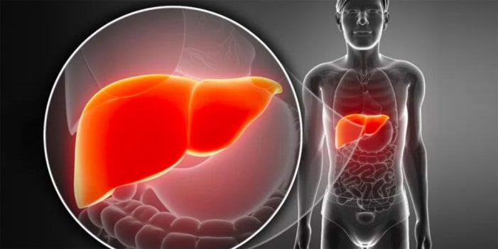 Investigan células resistentes a quimioterapia
