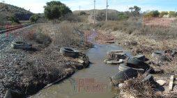 Enfrentamos una crisis biológico-ambiental: Semarnat
