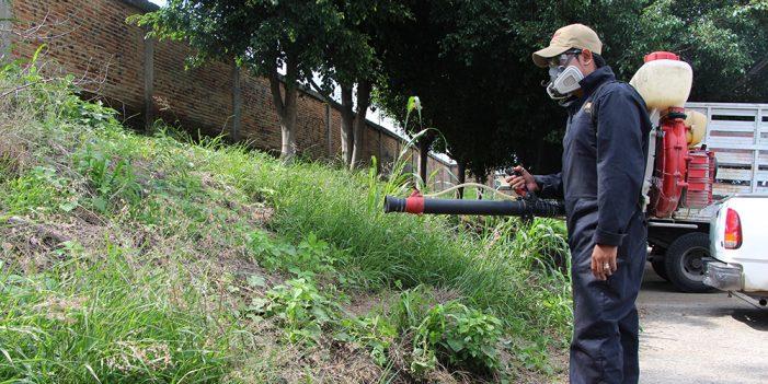 Aumentan casos de dengue en Jalisco