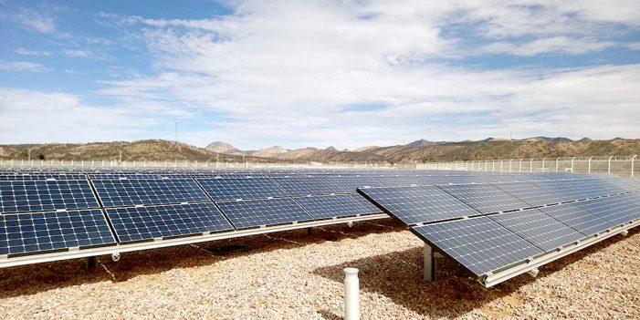Ni un paso atrás en materia de energías renovables: Partido Verde